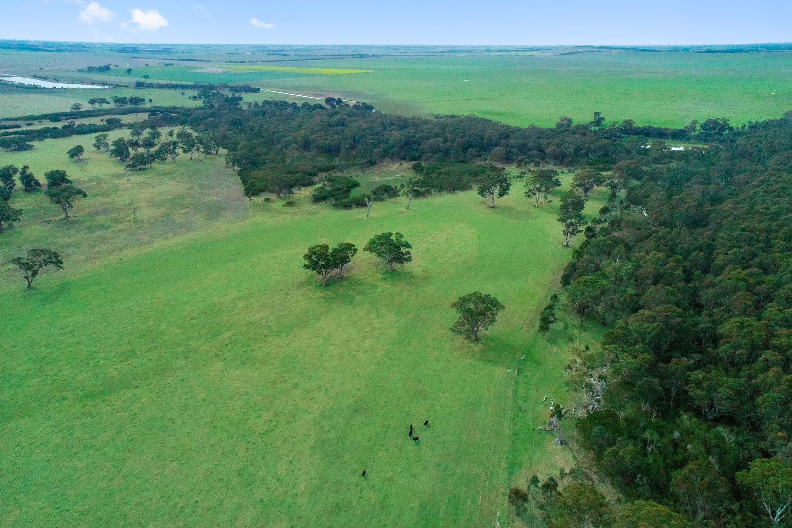 Lower cairnbrook, Glengarry VIC 3854, Image 1