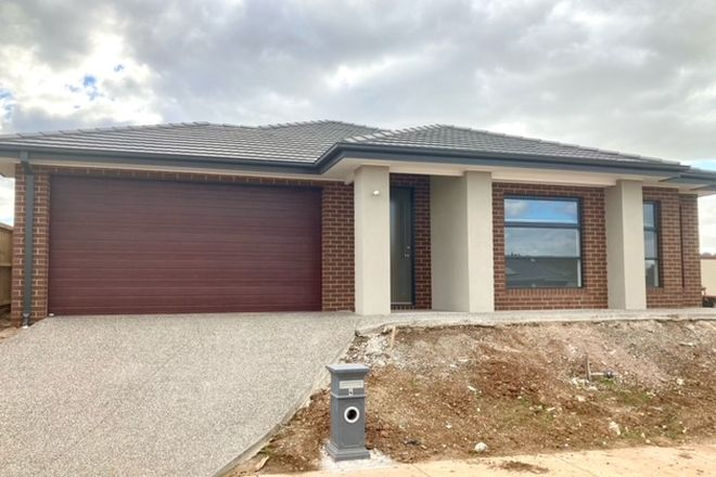 Picture of 4 Hollyhoke Drive, MADDINGLEY VIC 3340