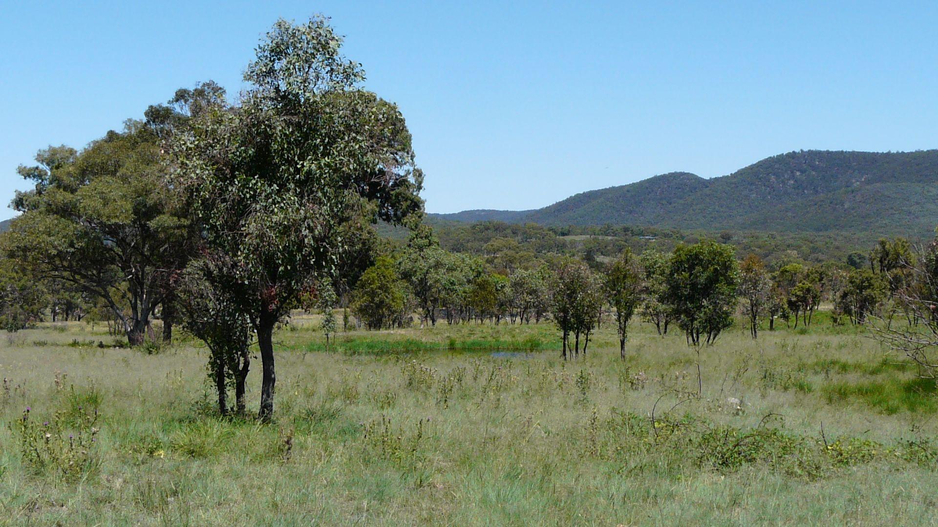 1843 Bruxner Way, Tenterfield NSW 2372, Image 2