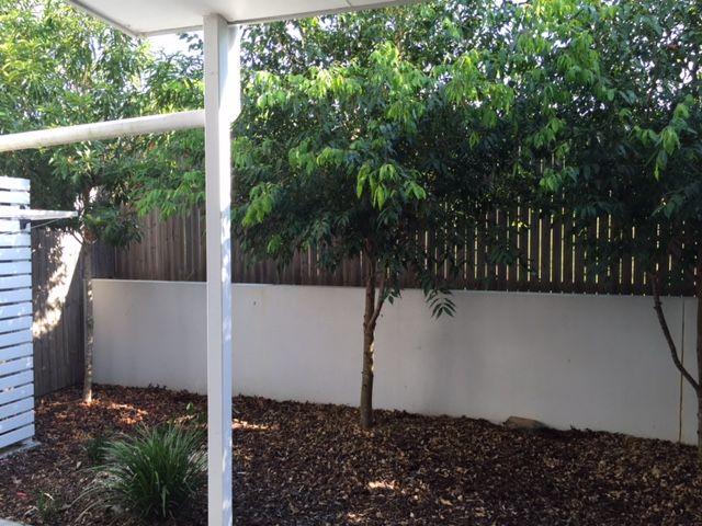 7/25 Northmarque street, Carseldine QLD 4034, Image 2