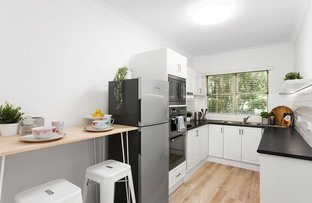 Picture of 2/40 Epping Road, Lane Cove NSW 2066