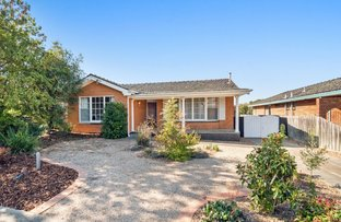Picture of 54 McKell Avenue, Sunbury VIC 3429