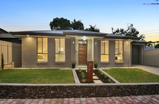 Picture of 2C Newman Avenue, Tea Tree Gully SA 5091