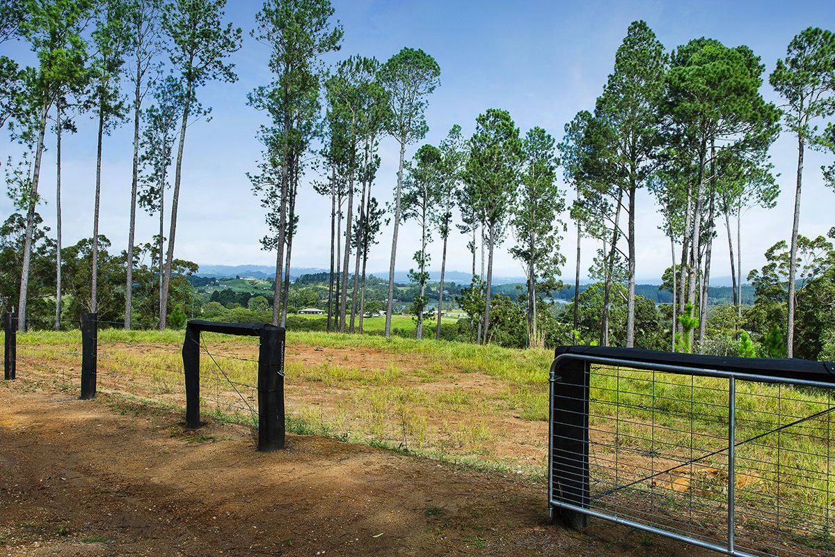 Lot 1/41 Henderson Road, Yungaburra QLD 4884, Image 2