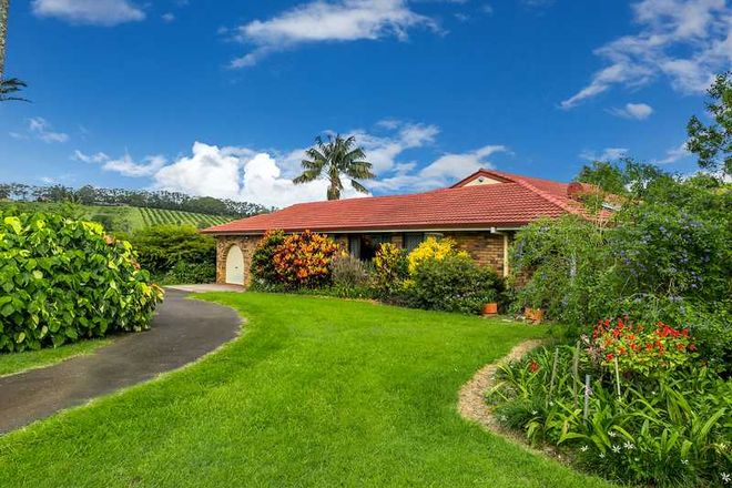 213 Hinterland Way, BANGALOW NSW 2479