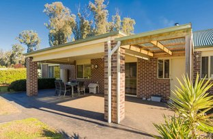 Picture of 38 Tarnpirr Road, Narbethong VIC 3778