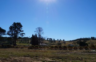Picture of Lot 302 Retford Park Estate, Bowral NSW 2576