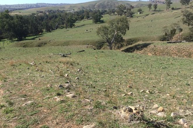 Picture of Lot 11 Widgeongully Road, JUGIONG NSW 2726