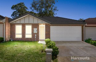 Picture of 4 Parsley Terrace, South Morang VIC 3752