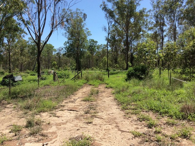 Lot 212 Smiths Road, Booie QLD 4610, Image 1