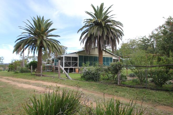 Picture of 1128 Woodside Road, TENTERFIELD NSW 2372