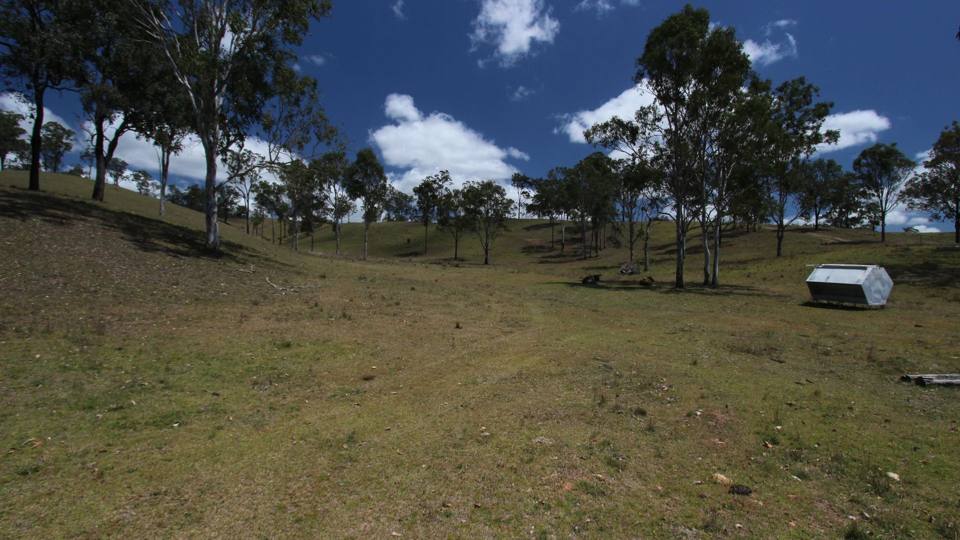 Lot 164 Voll Road, Emu Creek QLD 4355, Image 1