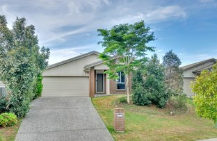 Picture of 4 Gammon Way, Redbank Plains QLD 4301