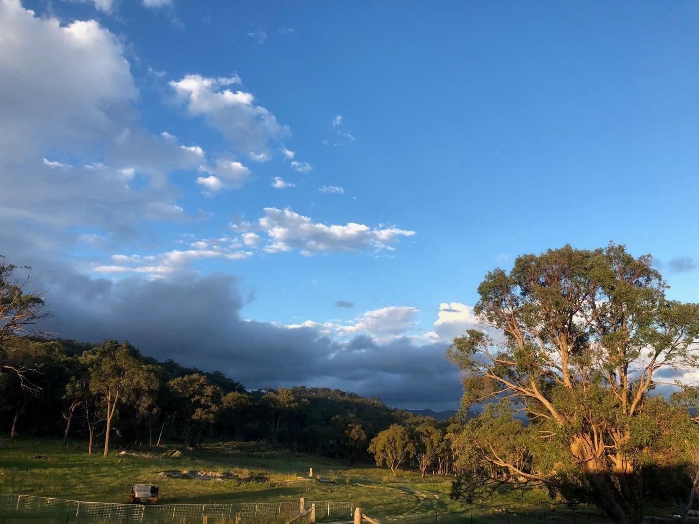 326 Pyes Creek Road, Bolivia NSW 2372, Image 2