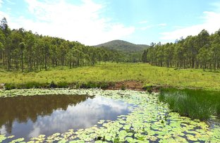 Picture of Lot 2 Clarence Way, Woodenbong NSW 2476