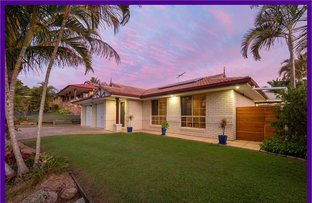 Picture of 5 Gymea Place, Kuraby QLD 4112
