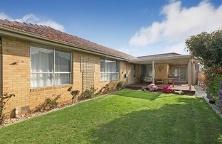 Picture of 24 Bruthen St, Moorabbin VIC 3189