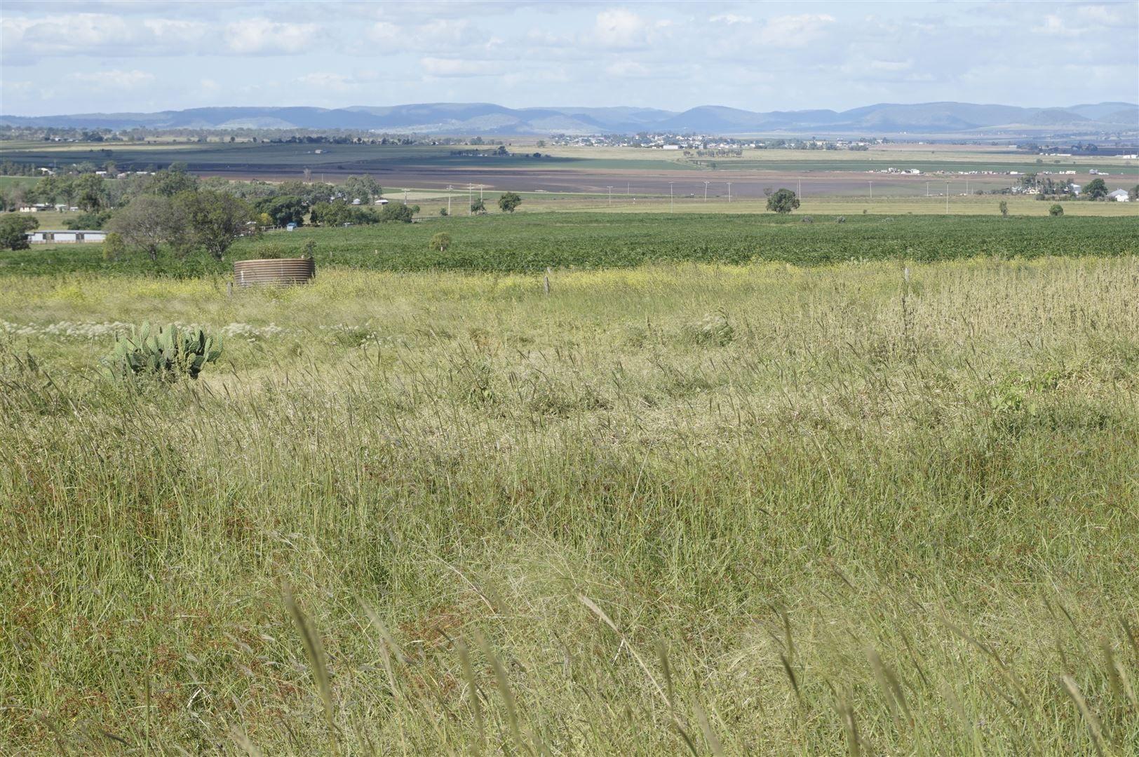 Nobby QLD 4360, Image 2