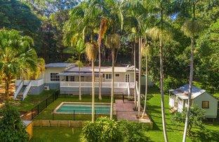 Picture of 774 Friday Hut Road, Binna Burra NSW 2479