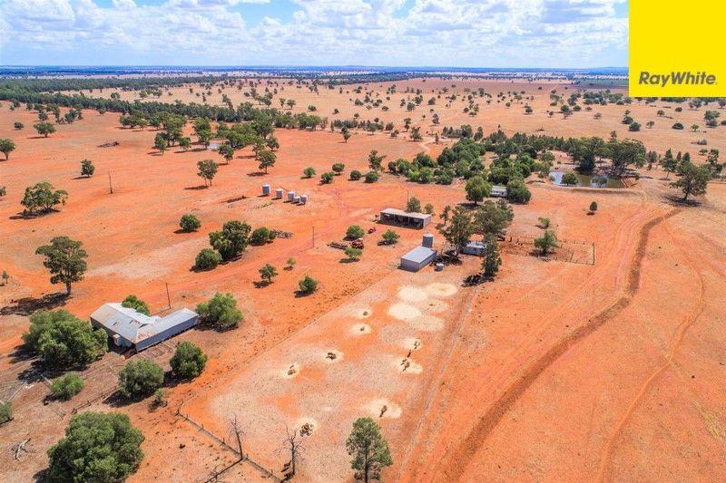 The Ranch Grassmere Road, Condobolin NSW 2877, Image 1