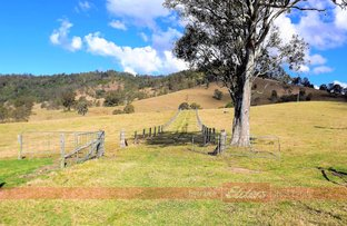 Picture of 253 Craven Creek Road 'Cravenleigh', Gloucester NSW 2422