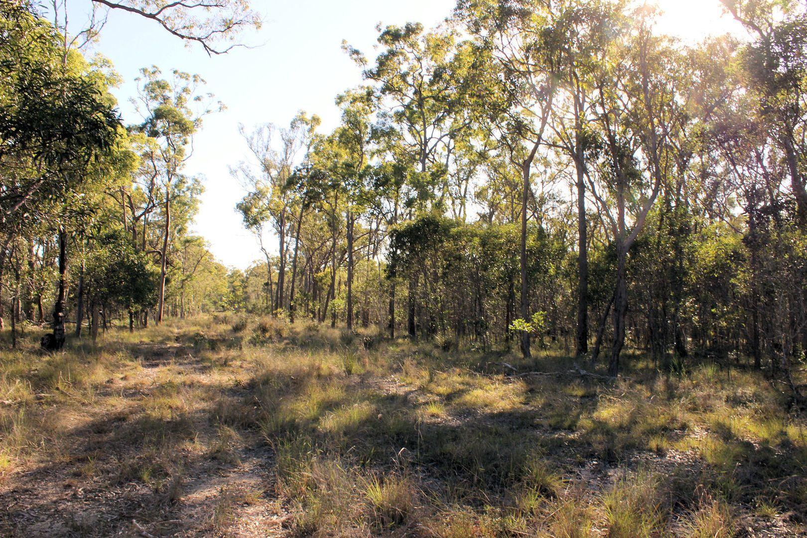 Lot 1 Bruce Highway, Maryborough QLD 4650, Image 1