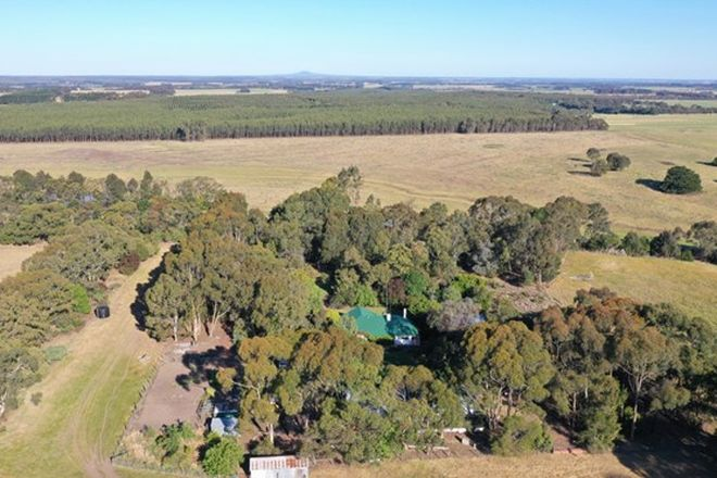 Picture of 1395 Condah - Coleraine Road, BRANXHOLME VIC 3302