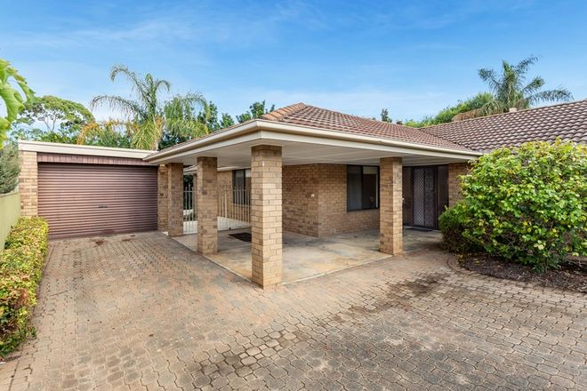 Picture of 6 Scarvell Avenue, TROTT PARK SA 5158