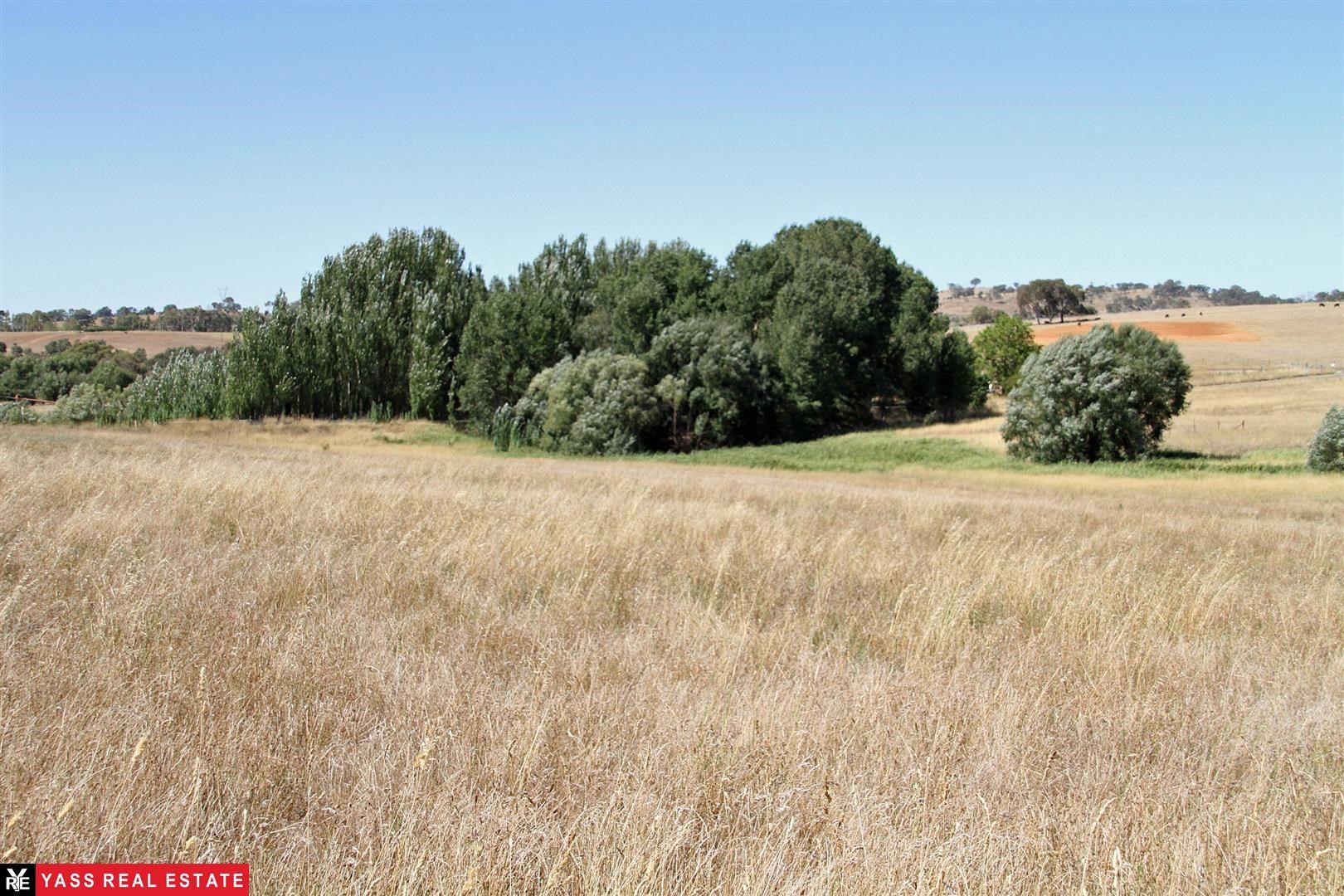 2 Kittys Creek Road, Yass NSW 2582, Image 1