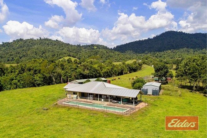 Picture of 613 MENA CREEK ROAD, MENA CREEK QLD 4871