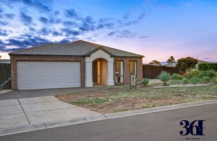 Picture of 19 Casuarina court, Harkness VIC 3337