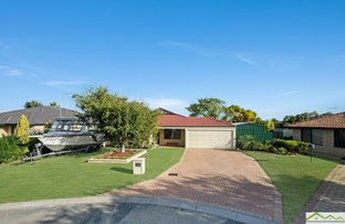 Picture of 10 Turton Place, Quinns Rocks WA 6030