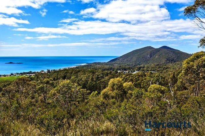 Picture of 70A Irby Boulevard, SISTERS BEACH TAS 7321