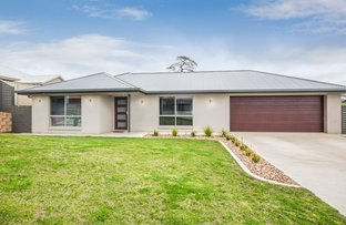 Picture of 10 Buffalo Crescent, Mount Gambier SA 5290