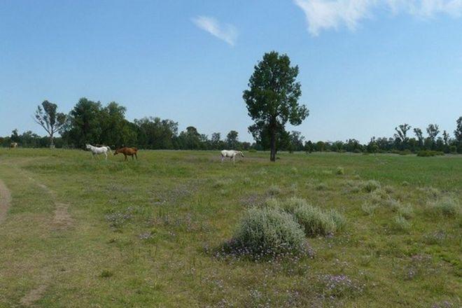 Picture of Mosquito Creek Road, PALLAMALLAWA NSW 2399
