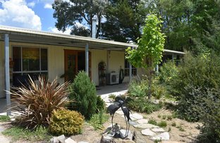 Picture of 86 Duncan Street, Tenterfield NSW 2372