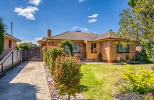 Picture of 934 Calimo Street, North Albury NSW 2640