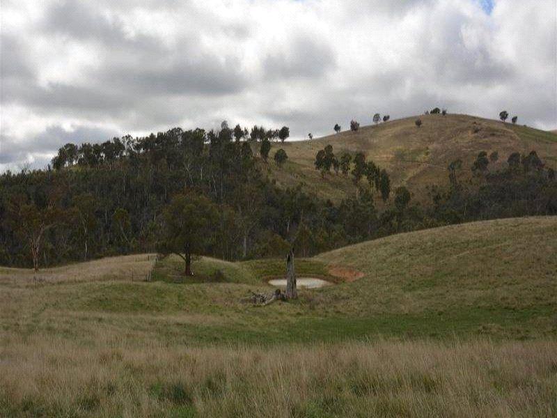 257 Victoria Falls Road, Cobungra VIC 3898, Image 2