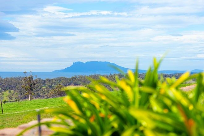 Picture of 131 Banwell Road, LITTLE SWANPORT TAS 7190