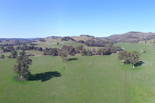 Picture of 273 Harrys Creek Rd, VIOLET TOWN VIC 3669