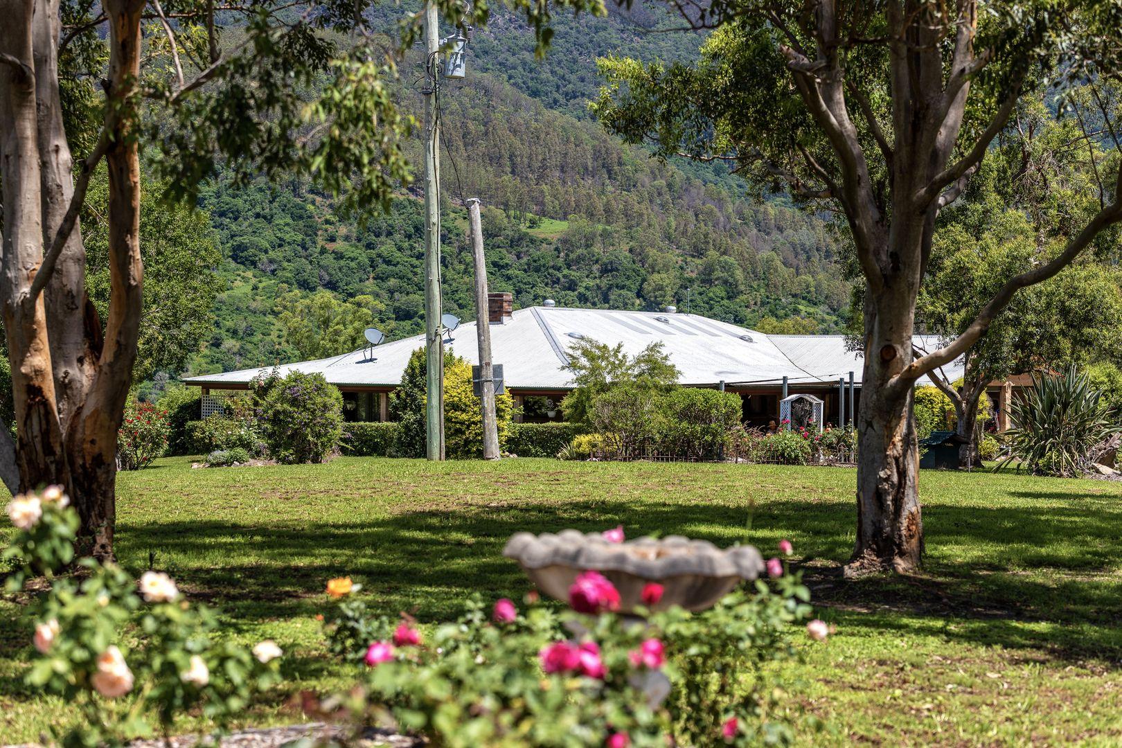 1187 Nowendoc Road, Mount George NSW 2424, Image 1