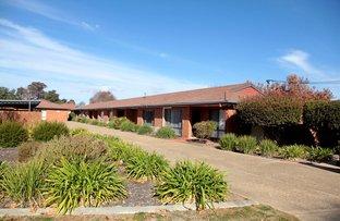 Picture of 6/80 Travers Street, Wagga Wagga NSW 2650