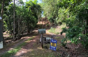 Picture of 343 Buchanan Creek Road, Cow Bay QLD 4873