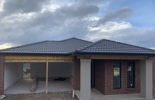Picture of 17 Benson Street, Brown Hill VIC 3350