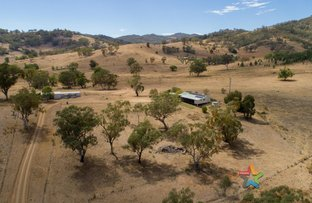 """Picture of """"Tooranooka"""" 298 Trough Gully Road, Tamworth NSW 2340"""
