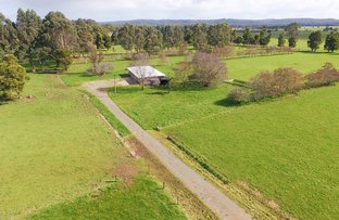 Picture of 178 Roger River Road, Roger River TAS 7330