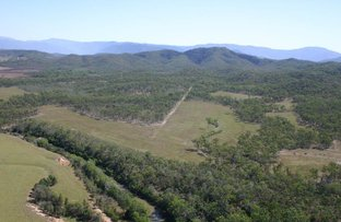 Picture of LOT 25 HAYMAN DRIVE, Bloomsbury QLD 4799