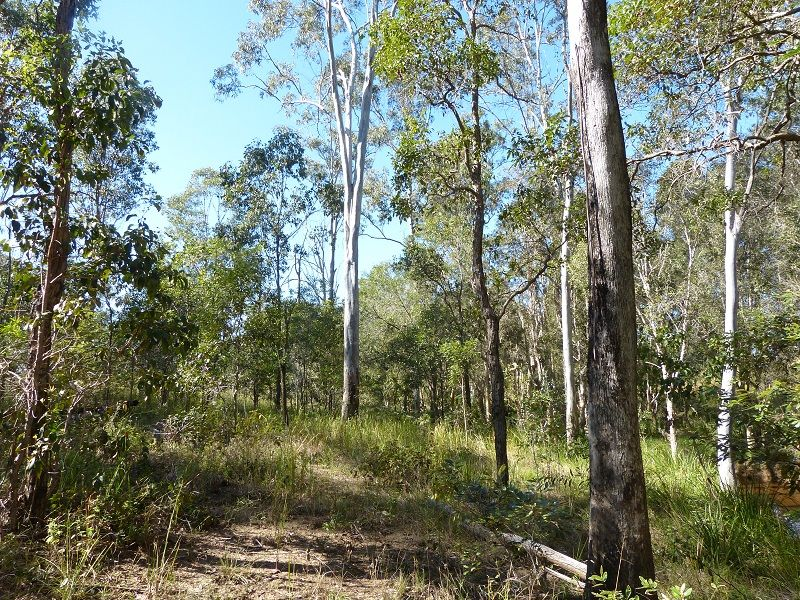 Lot 80 of 1873 Mungar Rd, Pioneers Rest QLD 4650, Image 2