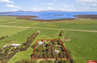 Picture of 5208 SOUTH GIPPSLAND HIGHWAY, Toora VIC 3962