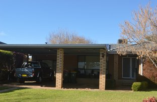 Picture of 24 Waddell Street, Canowindra NSW 2804